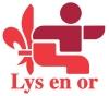 Logo lys or